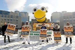 Преодолевая все препятствия и несмотря ни на что мы боролись за спасение пчел